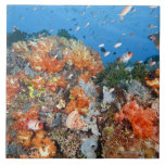 Healthy reef structure, Komodo National Park Large Square Tile