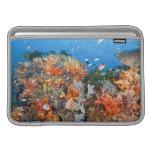 Healthy reef structure, Komodo National Park MacBook Sleeves