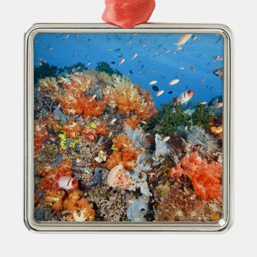 Healthy reef structure, Komodo National Park Christmas Ornament