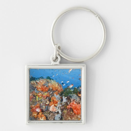 Healthy reef structure, Komodo National Park Silver-Colored Square Keychain