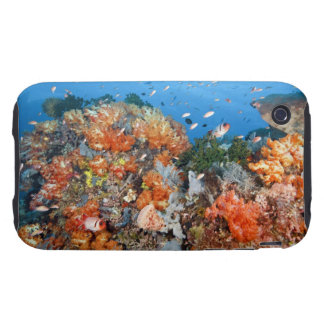 Healthy reef structure, Komodo National Park Tough iPhone 3 Case