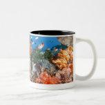 Healthy reef structure, Komodo National Park Two-Tone Coffee Mug
