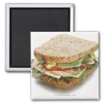 Healthy sandwich 2 inch square magnet