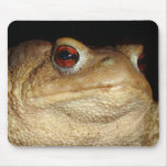 Hear All See All Say Newt Mouse Pad