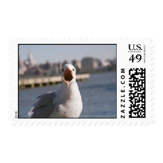 Hear Me Roar! Stamps