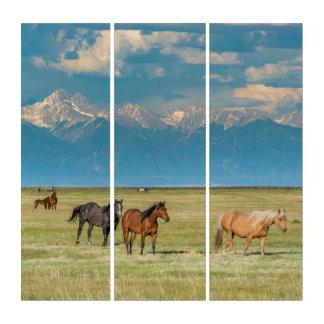 Heard of Horses in Hayfield Triptych