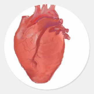 Heart Anatomy design Classic Round Sticker
