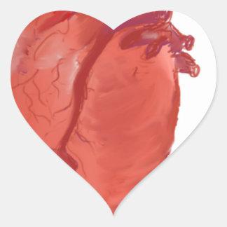 Heart Anatomy design Heart Sticker