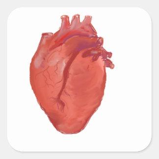 Heart Anatomy design Square Sticker