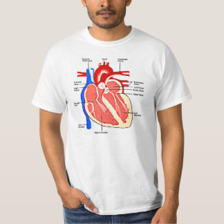 Heart Anatomy Geek T-Shirt
