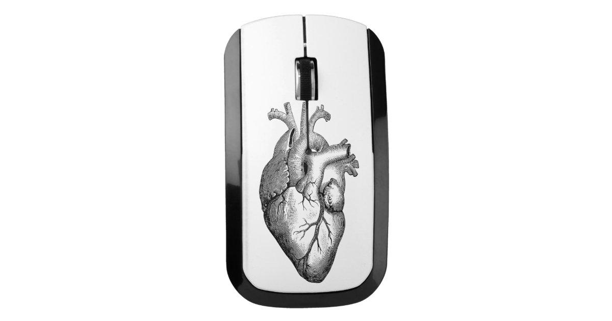 Heart Anatomy Science Wireless Mouse Zazzle