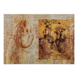 Heart And Its Blood Vessels /  Bronchial Arteries Poster