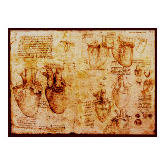 Heart And Its Blood Vessels , Brown Canvas Poster