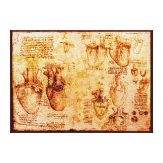 Heart And Its Blood Vessels, Brown Canvas Print