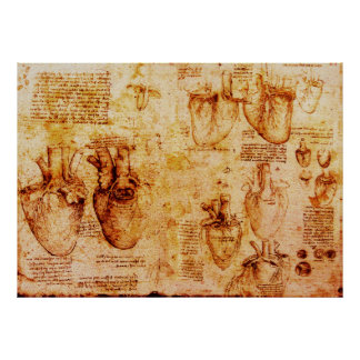 Heart And Its Blood Vessels , Brown Poster