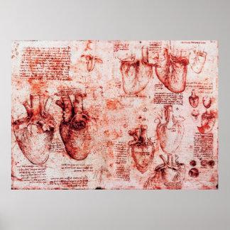 Heart And Its Blood Vessels Leonardo Da Vinci,Red Poster