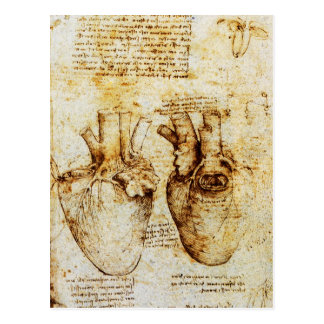 Heart And Its Blood Vessels Parchment Postcard