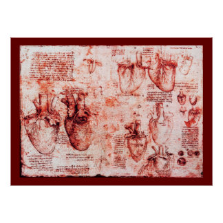 Heart And Its Blood Vessels , Red  Canvas Poster