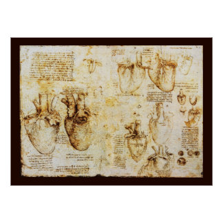 Heart And Its Blood Vessels , Sepia Canvas Poster