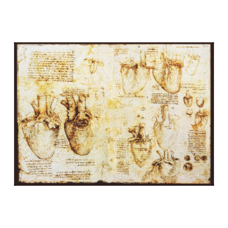Heart And Its Blood Vessels, Sepia Canvas Print