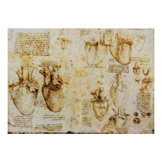 Heart And Its Blood Vessels,Sepia Poster