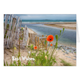 Heart Anglesey Scenic View Beach And Wild Poppies Card