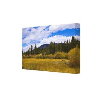 Heart Bar Meadow in Fall 1 wrappedcanvas