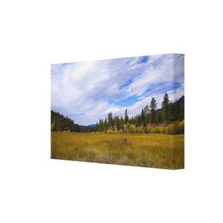 Heart Bar Meadow in Fall 2 wrappedcanvas