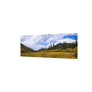 Heart Bar Meadow in Fall Wrapped Canvas wrappedcanvas