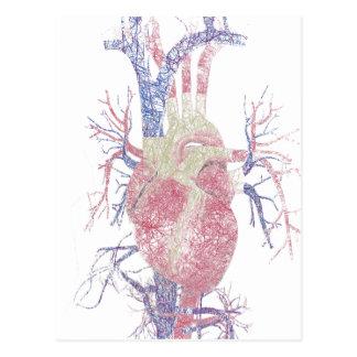 Heart (Biro) Postcard