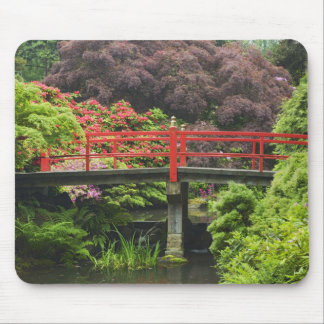 Heart Bridge with blossoming rhododendrons, Mouse Pad