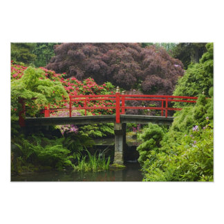Heart Bridge with blossoming rhododendrons, Poster