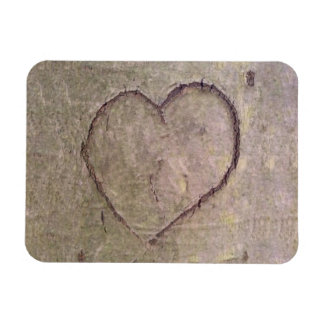 Heart Carved in a Tree Magnet