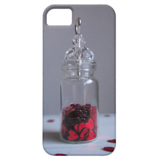 Heart collector iPhone 5 case