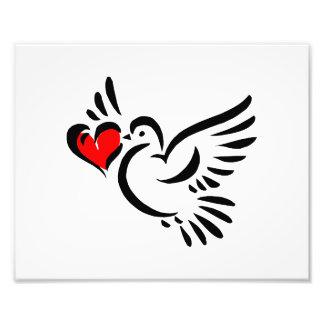 heart dove graphic love valentine photo print