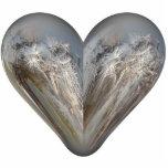 heart fluffy seeds cut out