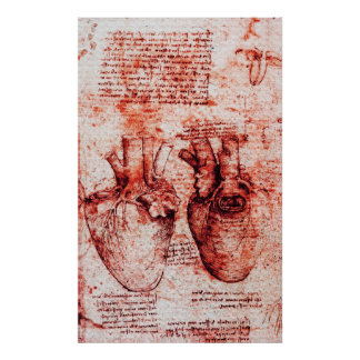 Heart,Its Blood Vessels,Leonardo Da Vinci Red Poster