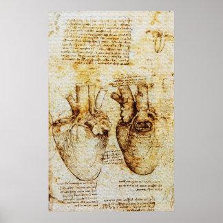 Heart,Its Blood Vessels,Leonardo Da Vinci,Sepia Poster