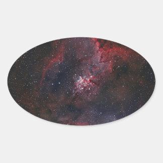 Heart Nebula Oval Sticker