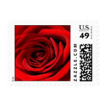 Heart of a Red Rose Postage Stamps