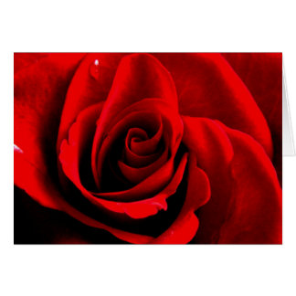 Heart of a Rose Card