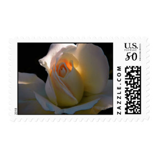 heart of gold blank postage
