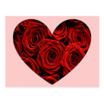 Heart of Roses Postcard