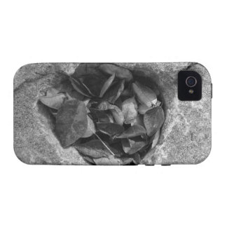 Heart of Stone Case For The iPhone 4