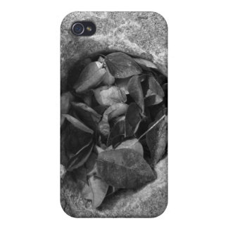 Heart of Stone iPhone 4 Cases