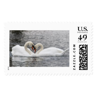 Heart of Swan Stamp