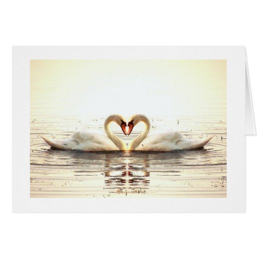 Heart of Swans Stationery Note Card