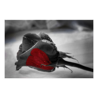 Heart of the Matter, Red Rose Heart Poster