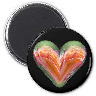 heart orange rose magnets