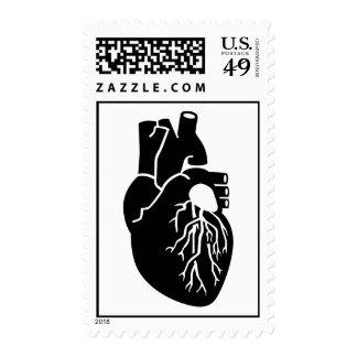 Heart Organ Postage Stamp